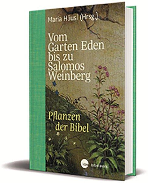 Vom Garten Eden bis zu Salomos Weinberg
