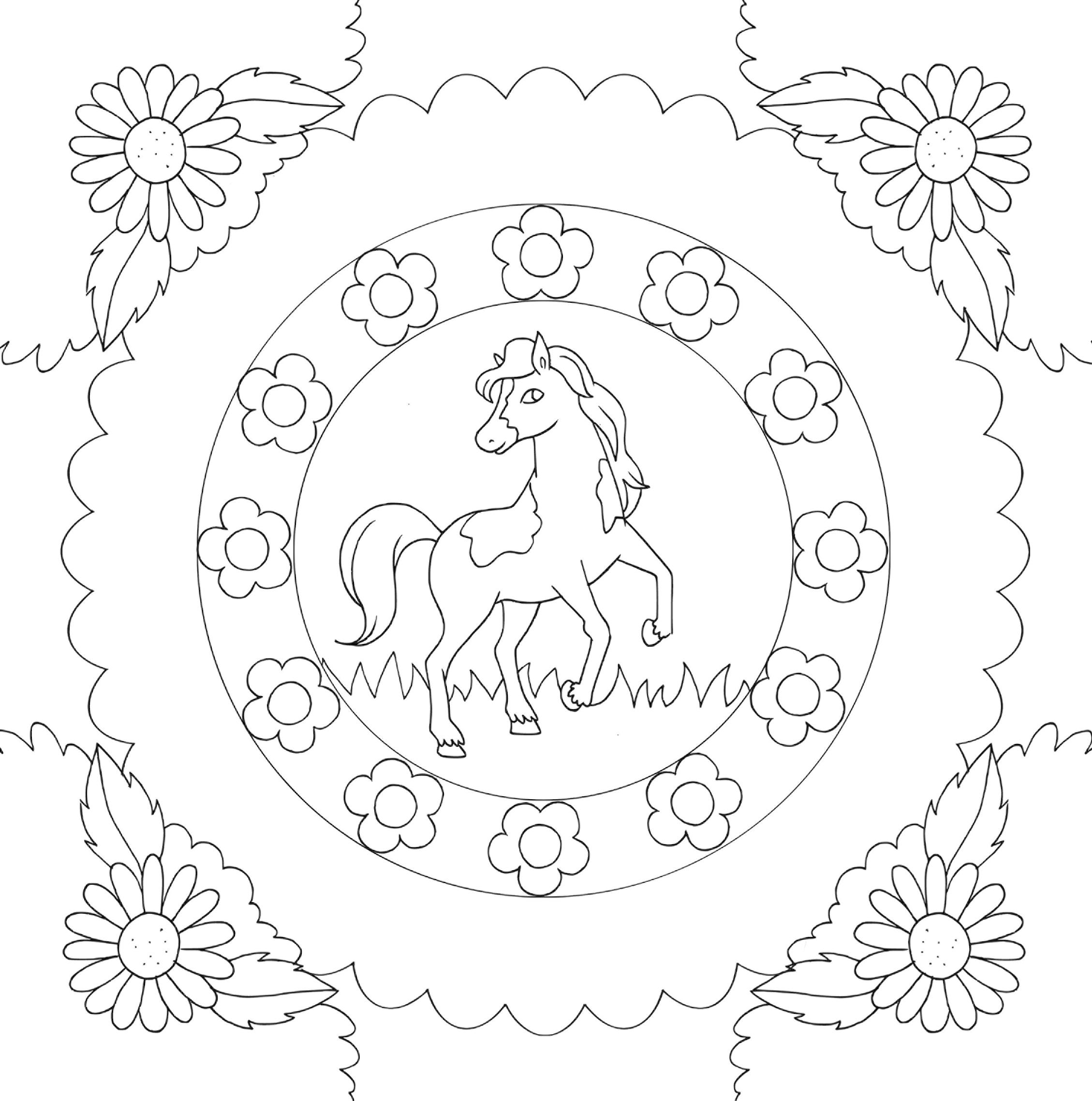 Meine schönsten Bilder: Pferde