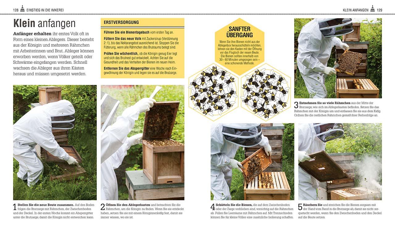 Das Bienen Buch