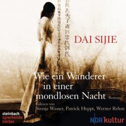 Wie ein Wanderer in einer mondlosen Nacht (Audio-CD)