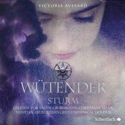 Wütender Sturm (Die Farben des Blutes 4) (Audio-CD)