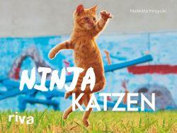 Ninjakatzen