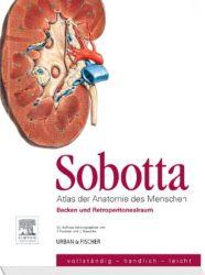 Sobotta, Atlas der Anatomie des Menschen Heft 6